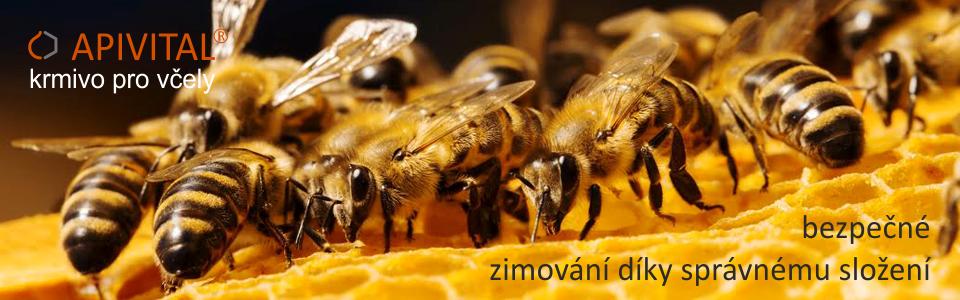 Díky převaze fruktózy APIVITAL® sirup nekrystalizuje v úlech ani při nízkých teplotách a je tak po celou zimu k dispozici včelám