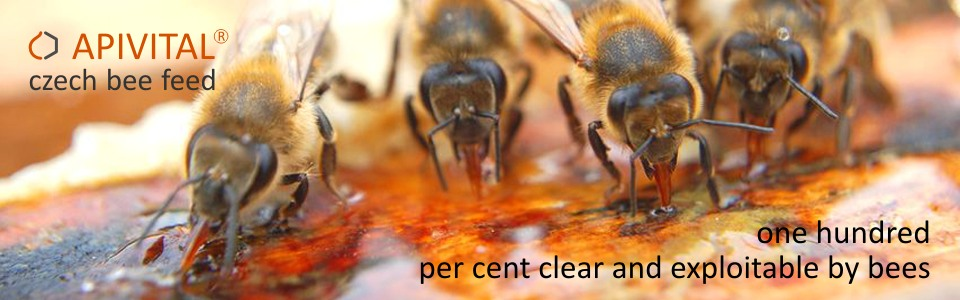 Thanks to predominance of fructose, supplies does not crystallize even at low temperature and are available to bees all winter.